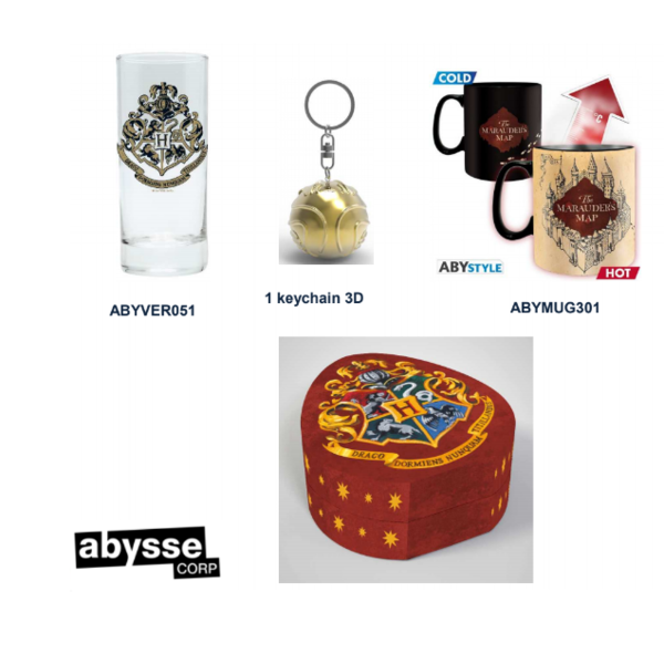 Gift Pack 3D Keychain, Mug and Keychain Harry Potter
