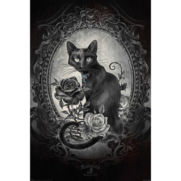 Poster Alchemy Paracelcus 91,5 x 61 cms