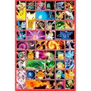Pokemon Poster Moves 91,5 x 61 cms