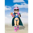SH Figuarts Chichi Kid Dragon Ball