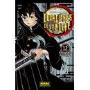 Guardianes De La Noche #12 Manga Oficial Norma Editorial (spanish)