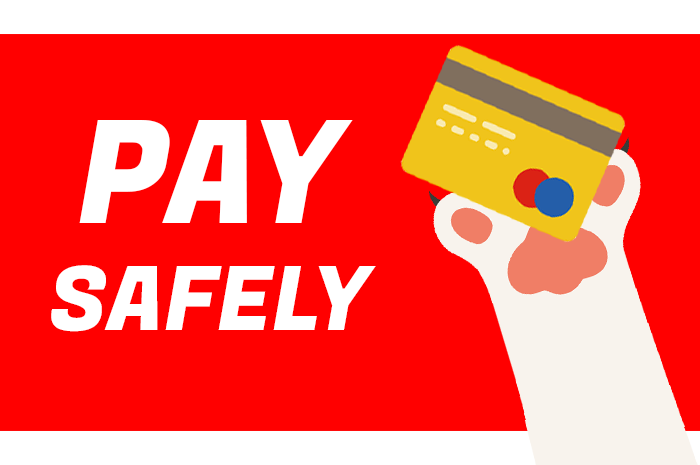 Pay Safely
