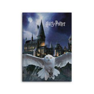 Hedwig & Hogwarts Harry Potter Fleece Blanket 70 x 140 cms