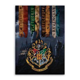 Hogwarts Polar Plaid Harry Potter 70 x 140 cms