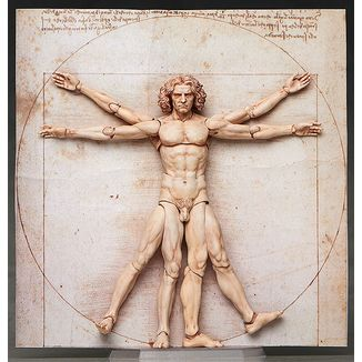 Figma The Table Museum - Vitruvian Man -