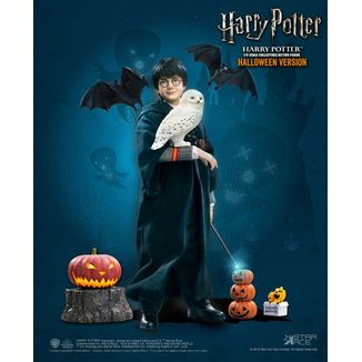 Harry Potter Child Halloween Limited Edition Figure Harry Potter My Favourite Movie