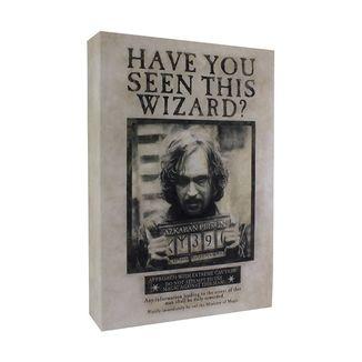 Luminart Harry Potter Sirius Black